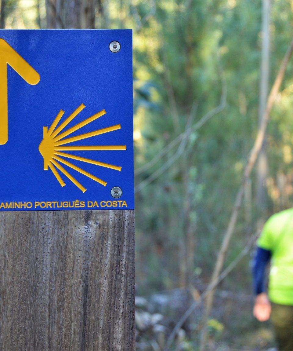 Coastal Camino (PGW) (21)