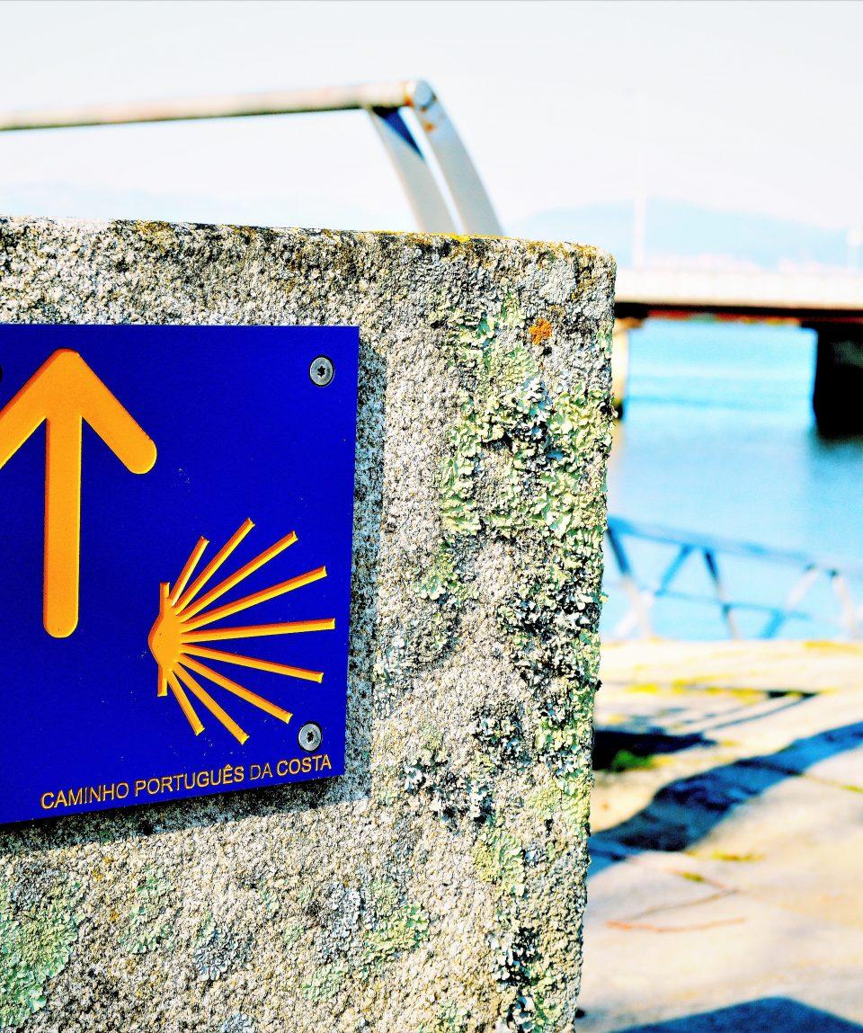 Coastal Camino (PGW) (9)