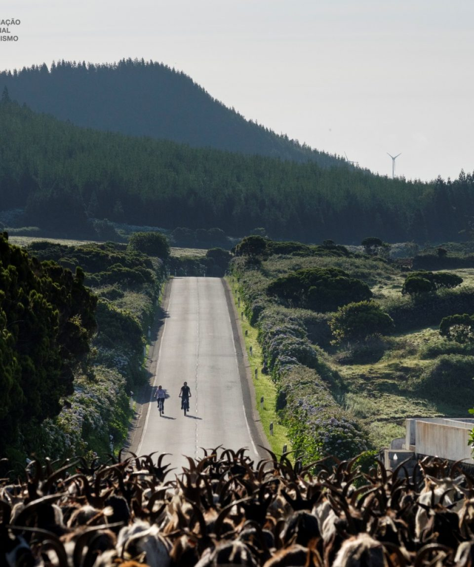 bike_tours_azores (1)