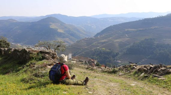 heart-and-soul-of-douro-wine-region-2