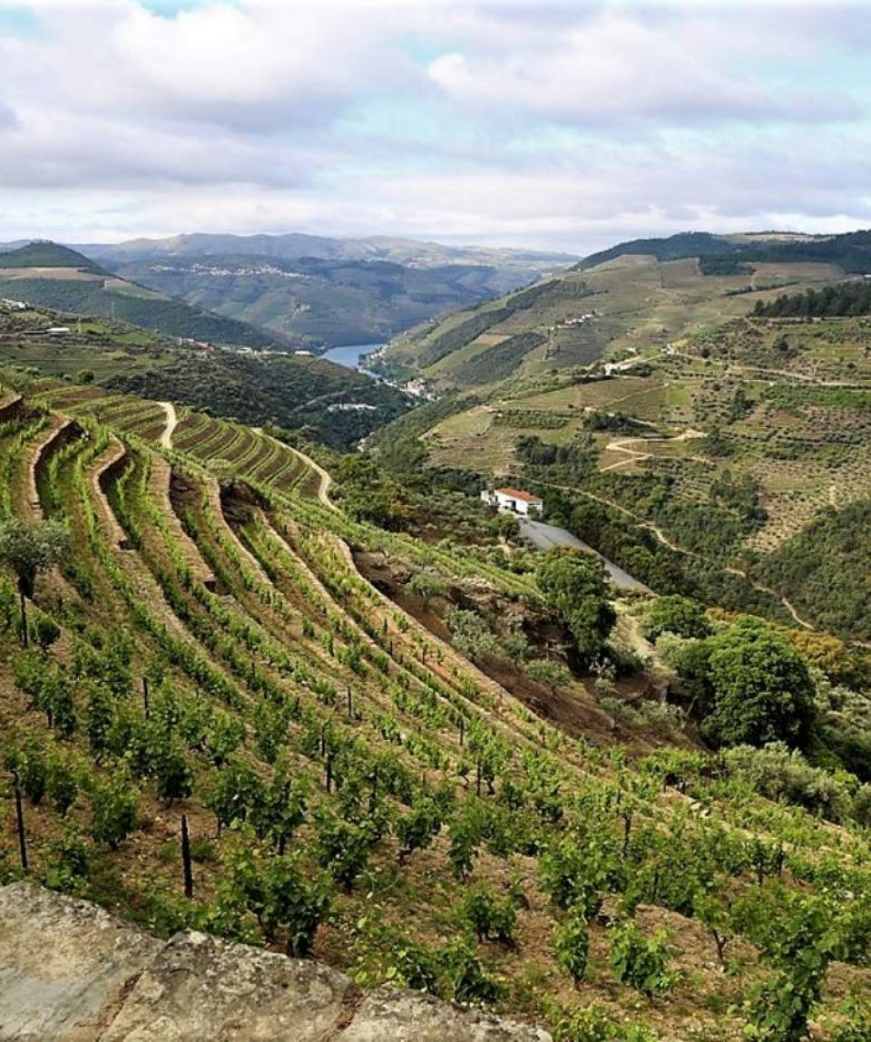 heart-and-soul-of-douro-wine-region-5