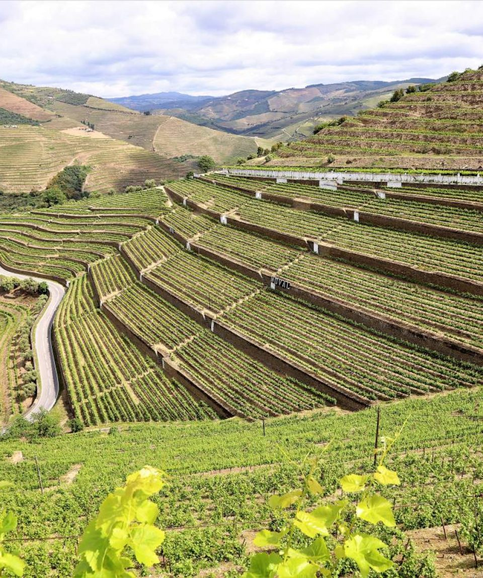 heart-and-soul-of-douro-wine-region-6