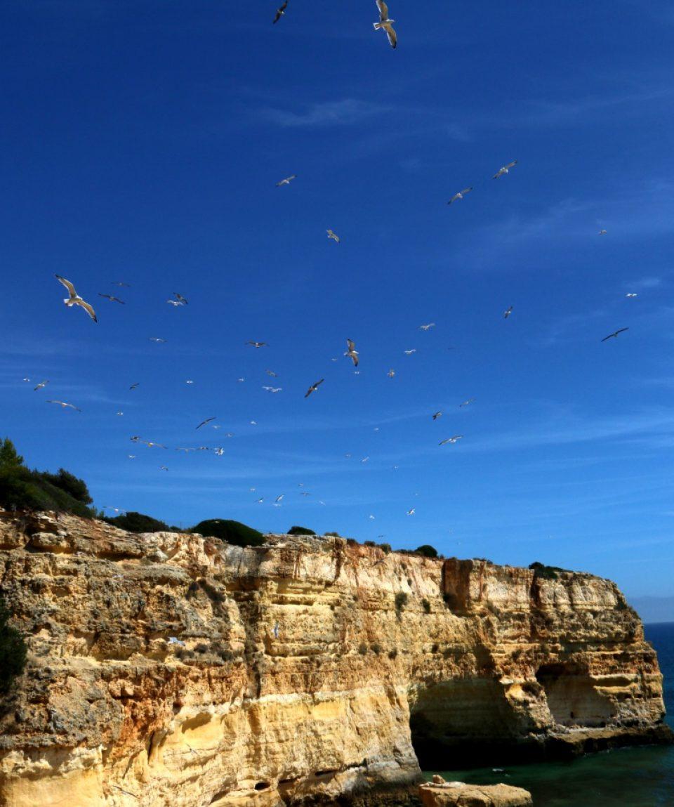 resize_Algarve_Praia da Marinha (4)