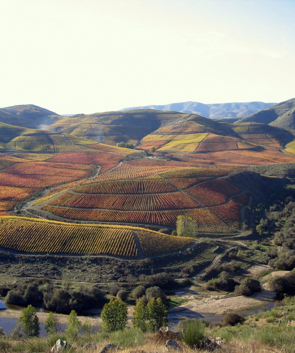 resize_douro valley