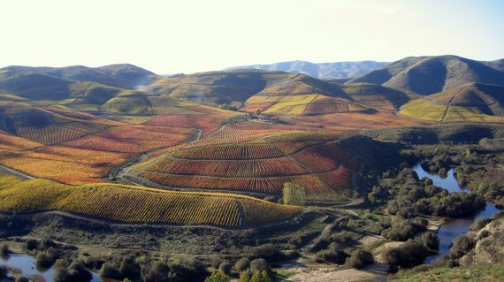 resize_douro valley